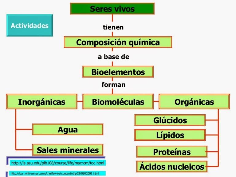 2 biomoleculas 120603003736 phpapp01 thumbnail 4